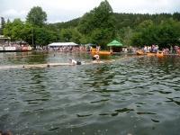 drevicska-lavka-2011-img09