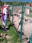 Výlet na Farmu Wenet v Broumově